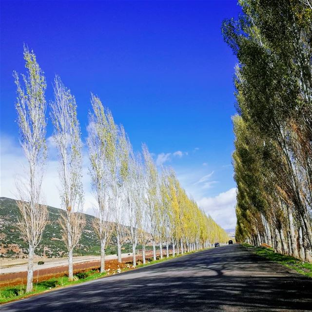 Always go someplace you've never been before.. ammiq bekaa ... (`Ammiq, Béqaa, Lebanon)