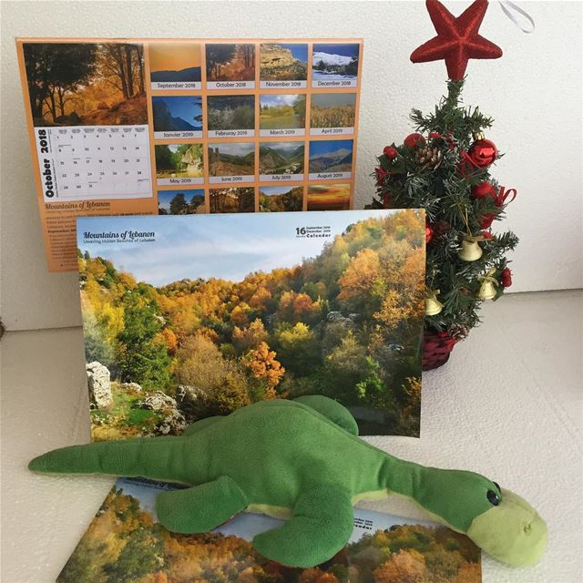 Did you buy your secret santa gift yet? 18.000 LBP for this Wall Calendars...