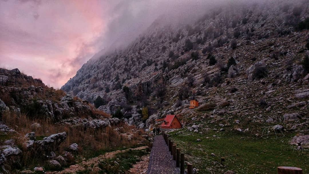 INHALE NATURE ! EXHALE STRESS 💨........ insta_lebanon bestofleb... (Tannurin At Tahta, Liban-Nord, Lebanon)