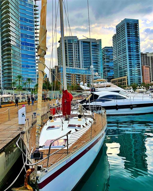 Guardians of the boat 🚣🏻‍♀️  spotthebirds  beirut  boats  marina ... (Beirut, Lebanon)