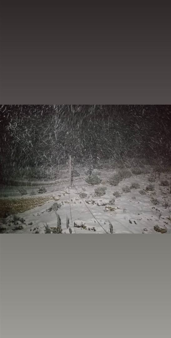 Pictures of snow rain and flood from the storm Norma