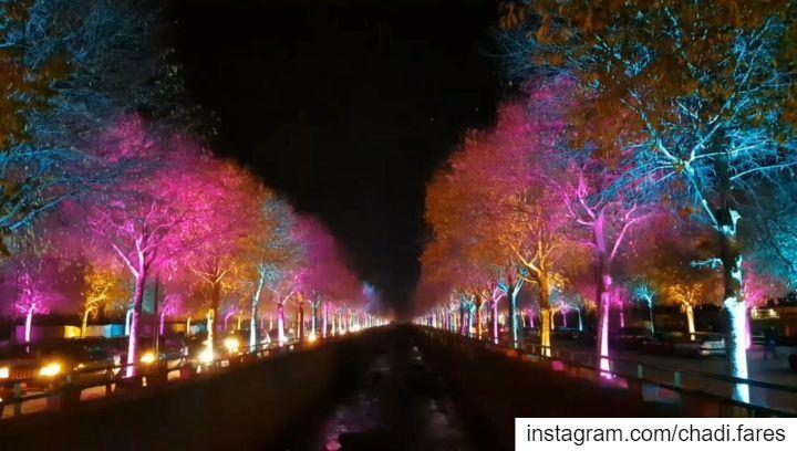 All i Want for Christmas is... (Zahlé, Lebanon)