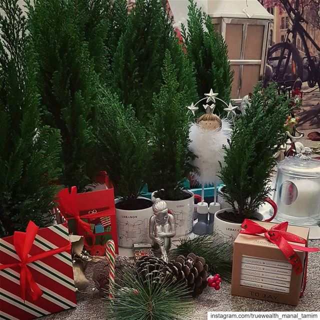 These are my sustainable gifts for family & friends.. 🌲💙Would you... (Beirut, Lebanon)