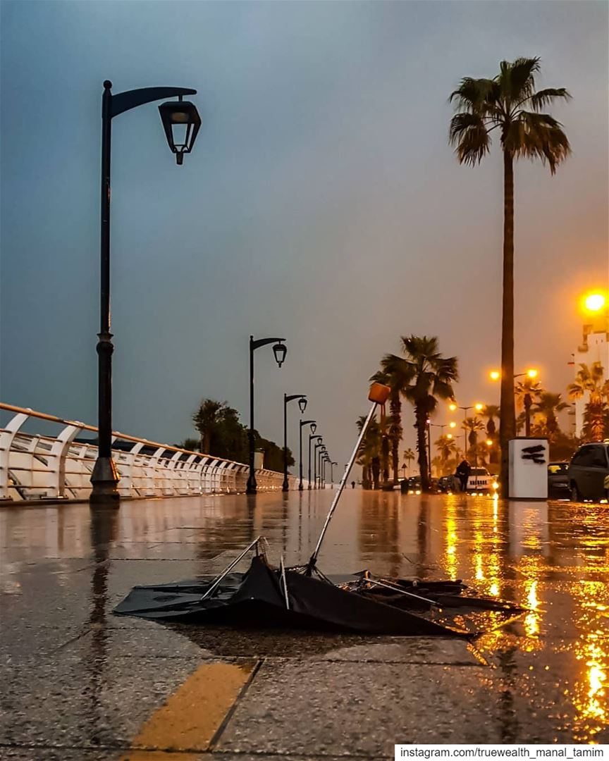 """Whichever way you chose ..You stay My dear Friend""""°°°📍Earth beirut..... (Beirut, Lebanon)"""
