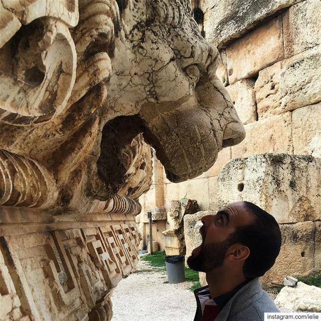 Have no fear! 🙎🏻♂️vs 🦁. baalbek Lebanon ruins livelovelebanon ... (Baalbek, Lebanon)