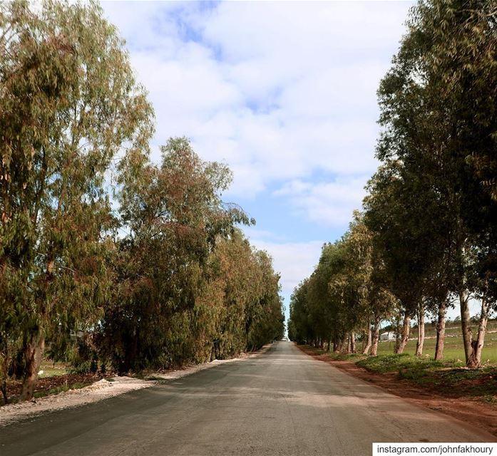 Scenic... (Marjayoûn, Al Janub, Lebanon)