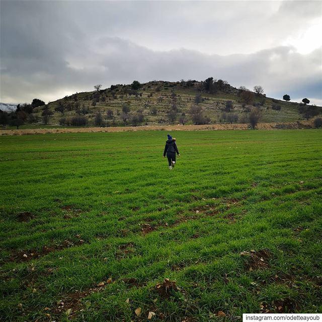 Freedom ❤️ world_bestangels ptk_lebanon super_lebanon livelovelebanon ... (Al Marj)