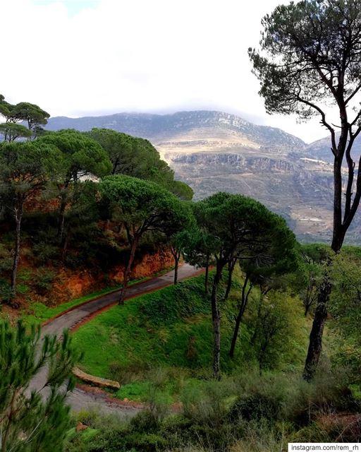 ~Breathe~ (Bkâssîne, Al Janub, Lebanon)
