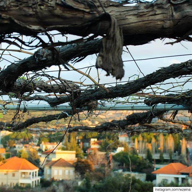 بينو ❤ بعد غياااب ضيعة شتوية عريشة قرميد...... lebanon ... (Beïno, Liban-Nord, Lebanon)