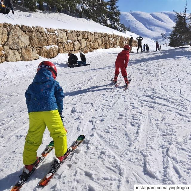 Kids enjoying their ski lessons on the slopes!!.... flyingfrog ... (Mzaar Ski Resort Kfardebian)