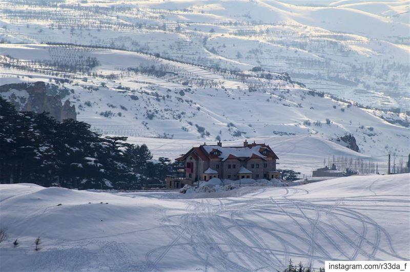 D r e a m H o u s e 🏚❄️ SweetEscape WinterWonderland WhiteChristmas ... (The Cedars of Lebanon)