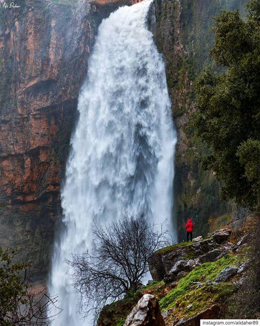 Find yourself outside 🏞.... waterfall lake river paradise watershot... (Jezzîne, Al Janub, Lebanon)