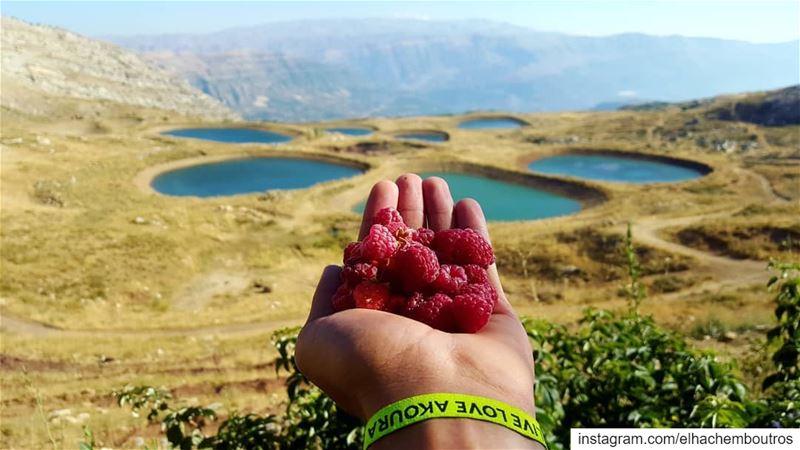 fruit is nature's candy🍇 akoura liveloveakoura livelovebeirut... (Akoura, Mont-Liban, Lebanon)