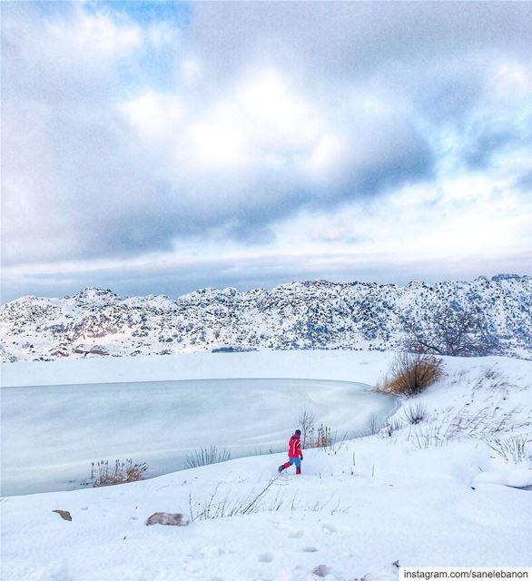 تلج ثلج، عم بتشتي الدنيي تلج ❄️ ⛄️... snowshoeingadventures 🎿... (Laklouk)