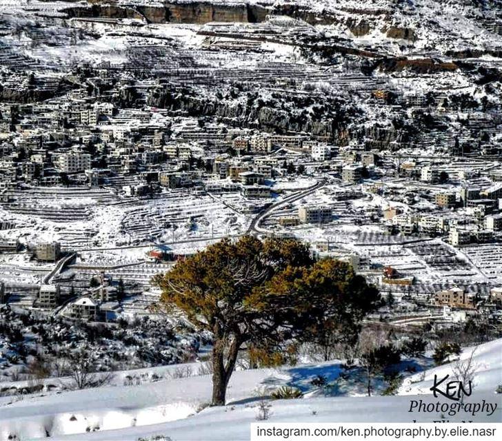 ...تموتُ القصيدةُ من شدَّة البَرْدِ..من قِلّة الفحم والزيْتِ..تيبَسُ في... (Faraya, Mont-Liban, Lebanon)