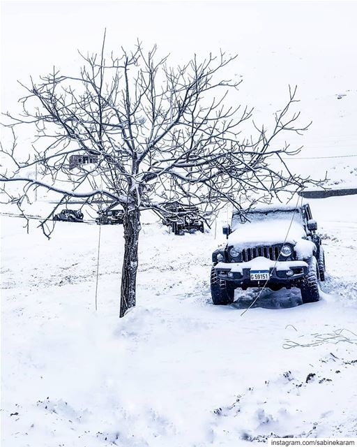lebanon jeeps mountains jeep offroad wrangler snow jeeplife ... (Sannine)