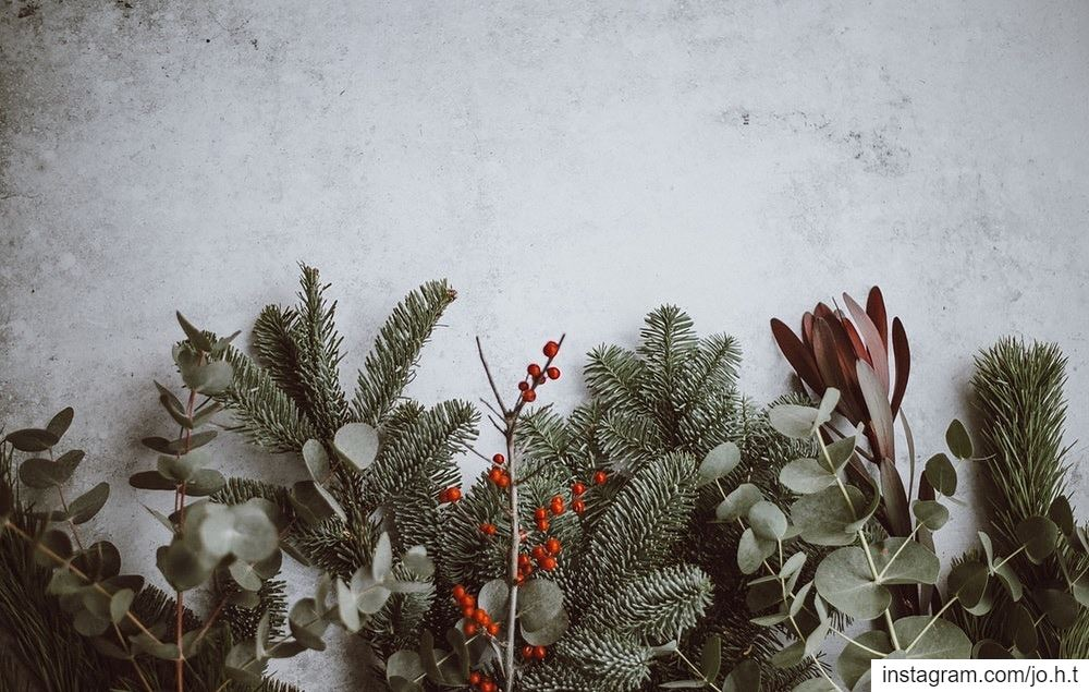 It's that time of the year♥️ nature retro instagood wanderlust ...