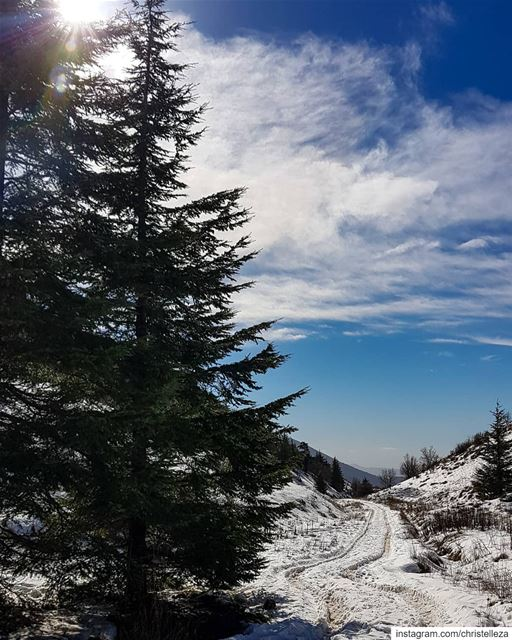 Winter wonderland 💙❄🌲....... dametraveler femmetravel ... (Aïn Zhalta, Mont-Liban, Lebanon)