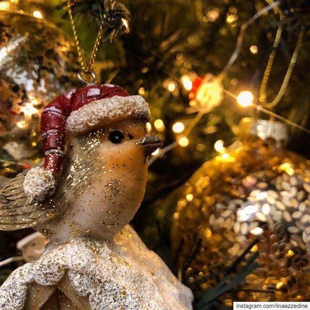 La magie de Noël 🎄✨✨.... ميلاد_مجيد merrychristmas joyeuxnoel ... (Beirut, Lebanon)