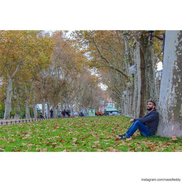 Take me back! france montpellier esplanade charlesdegaulle ... (Esplanade Charles de Gaulle)