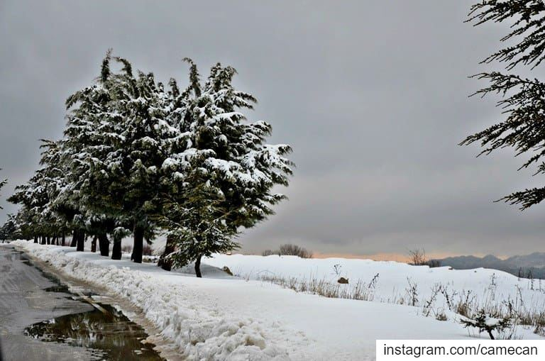 lebanon zaarour december winter season snow weather ... (Zaarour)