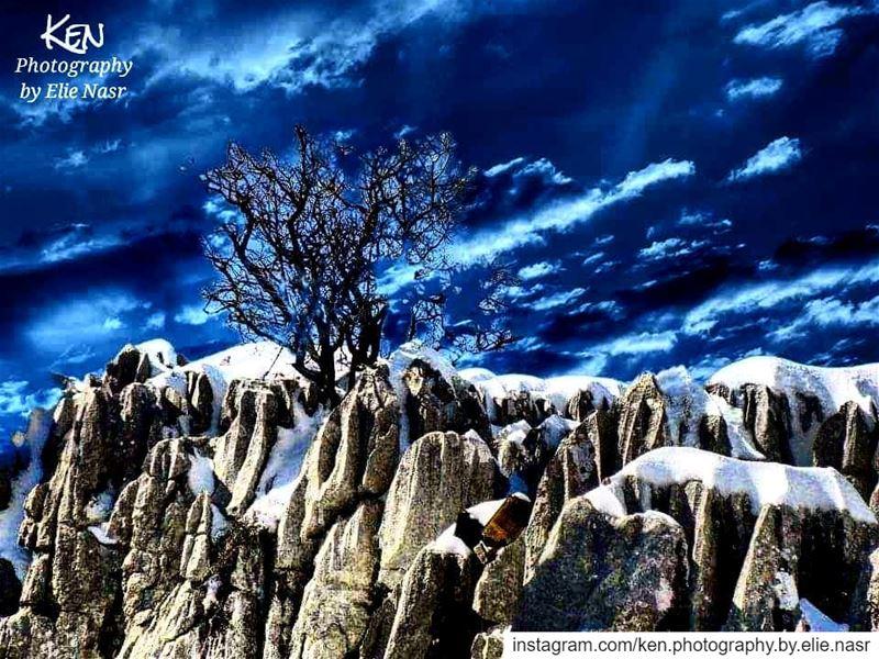 ...يا طعمَ الثلج، وطعمَ النار..ونكهةَ شكي، وكفريأشعُرُ بالخوف من المجهول (Fakra Kfarzebian Liban)
