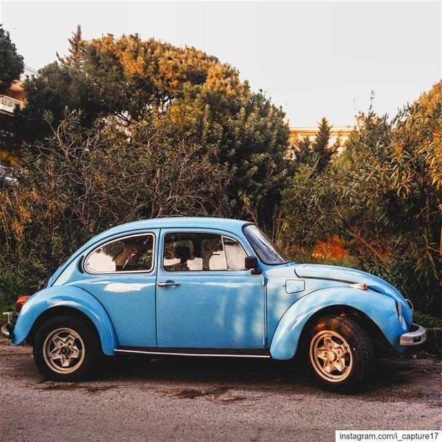 وايل درايڤينغ... صورة مرئة طريق...••••• whiledriving spontaneous... (Fanar, Mont-Liban, Lebanon)