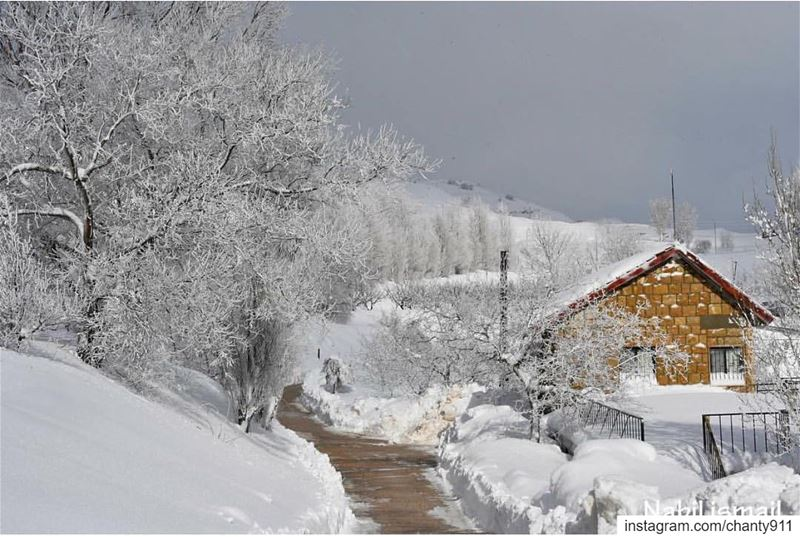 nature snow instagood explore natire naturephotography natureporn ... (Sawfar, Mont-Liban, Lebanon)
