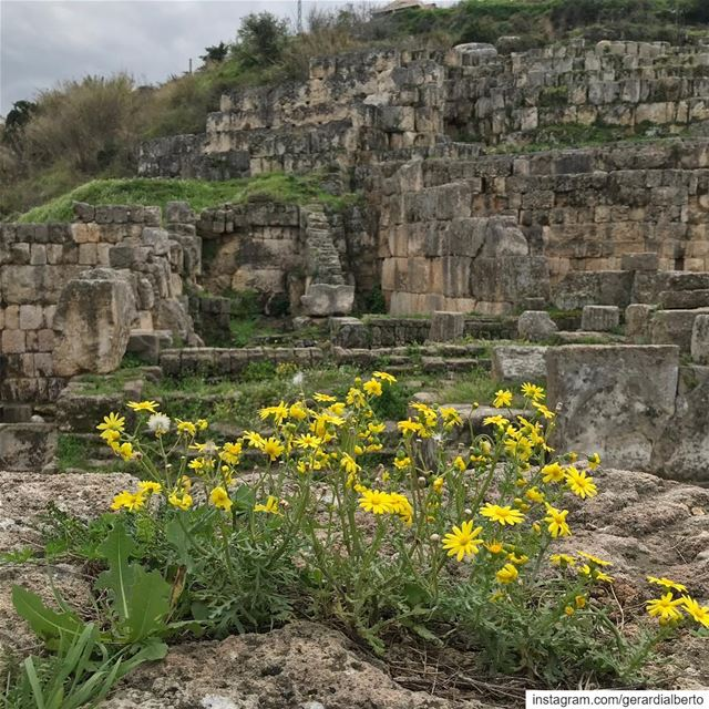sidon southerngovernorate صيدا lebanon archaeology phoenicians ... (Tempio di Eshmun)