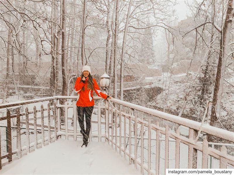 Winter Wonderland ❄️... (Faraya, Mont-Liban, Lebanon)