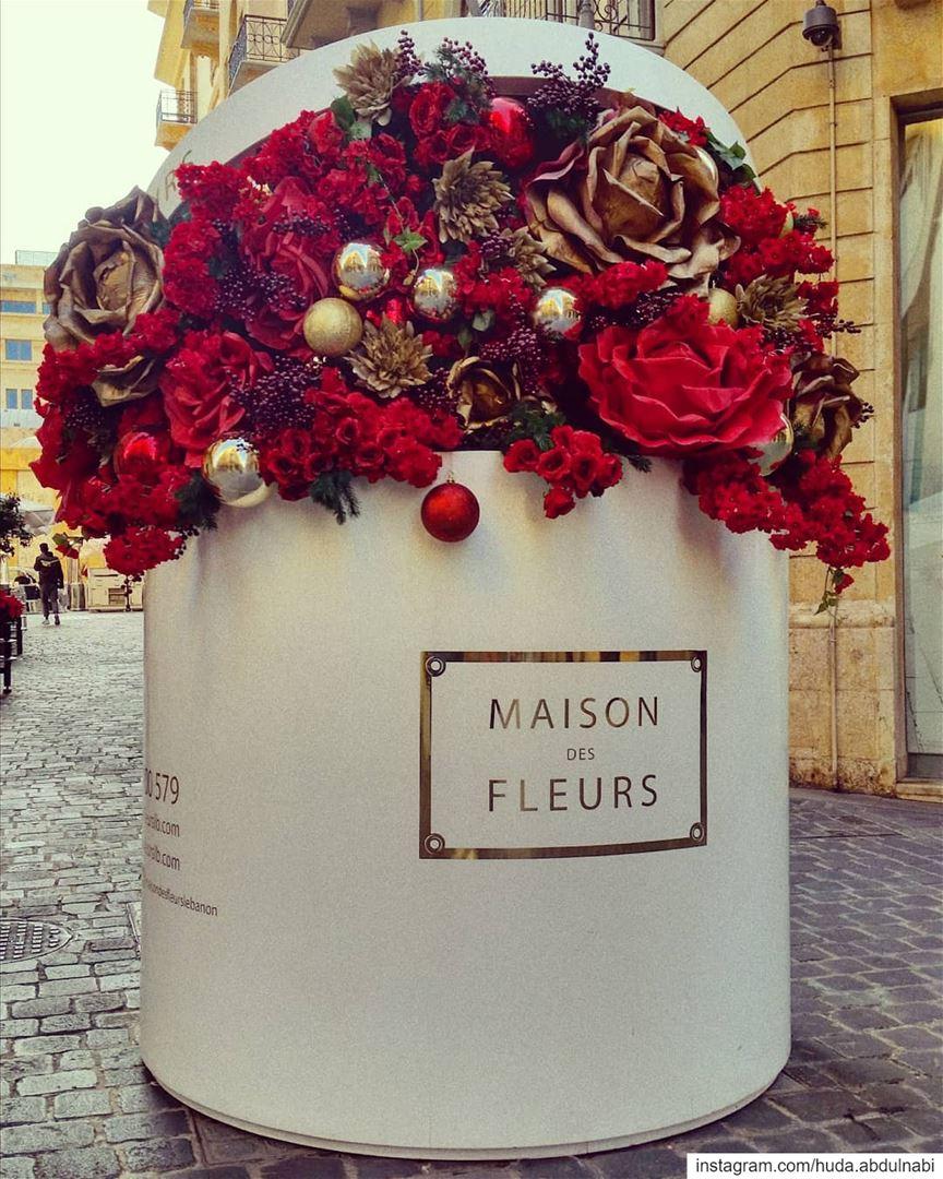 So beautiful 😴💙🌷 Christmas spirit 🌷 flowers flower redflowers red...