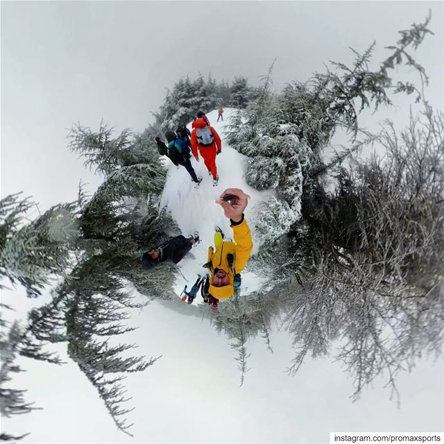 Join ProMax this Sun.Jan 13 to Tannourine Forest Reserve Snowshoeing 🍃 ...