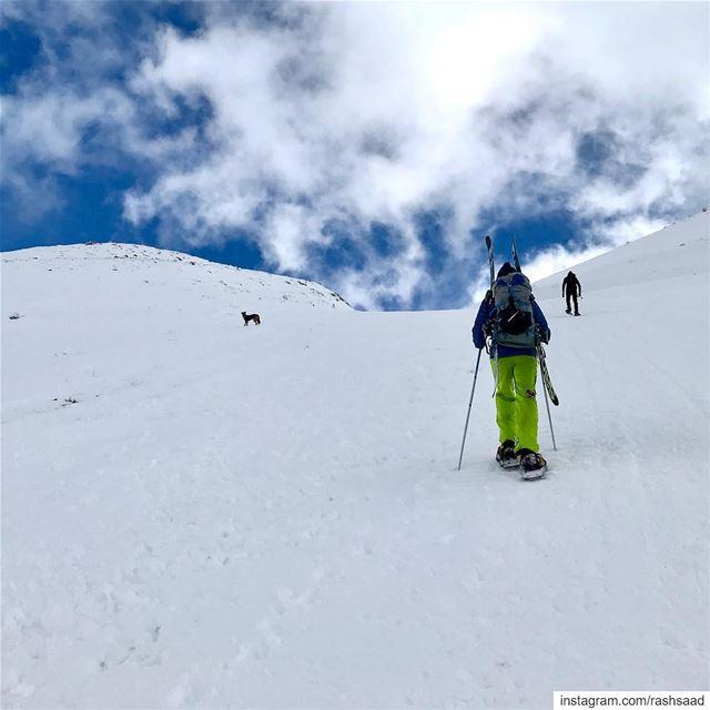 Avant-première ⛷ .... hiking snowshoeing skiing snow ... (Mzaar Kfardebian)
