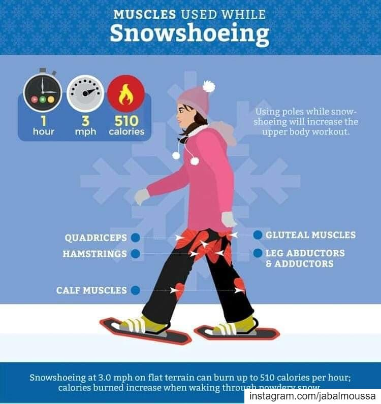Benefits of Snowshoeing. JabalMoussaCall us at 71-944405 for more...
