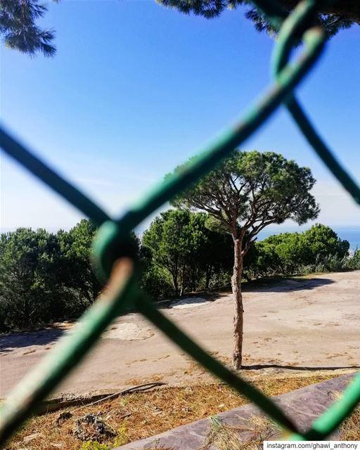 Welcome back dear sunny days💚🌞Morning🙋♂️... (Aïn Saâdé, Mont-Liban, Lebanon)