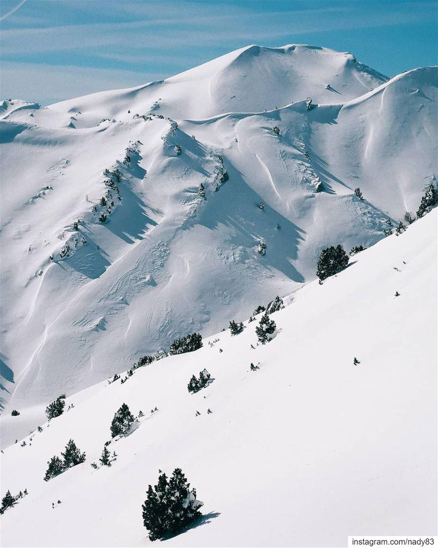 Into the white. backcountryskiing skitouring lebanon snow ski ...