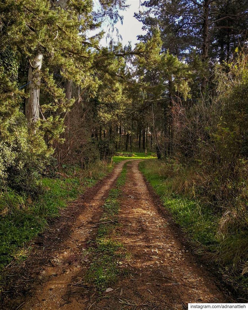mobilephotography shotoniphone photos photo naturephotography nature... (`Alayh, Mont-Liban, Lebanon)
