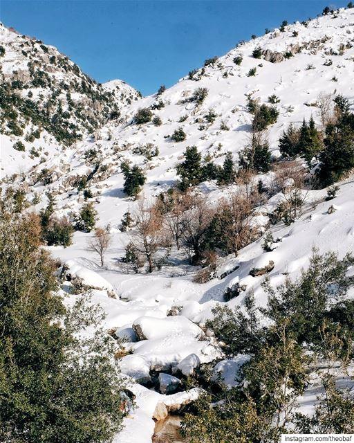Winter vibes ❄ 🇱🇧.... laklouk livelovebeirut livelovelaklouk ... (El Laklouk, Mont-Liban, Lebanon)
