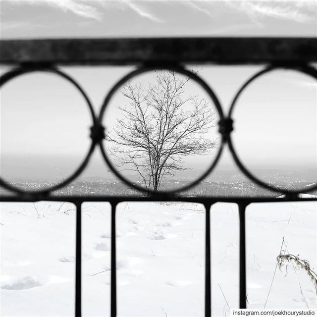 Sofar, Lebanon 12-1-19... pmwintergridchallenge winteriscoming ...