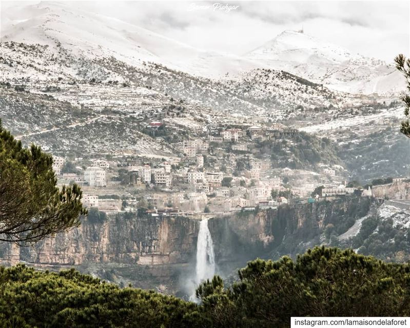 From the pines of Bkassine and all the way to Jezzine; the town, the...