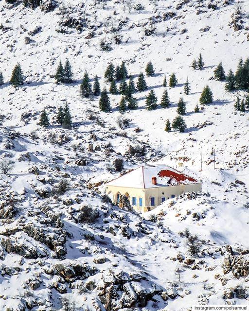 The famous house! ❄️ laklouk lebanon..... love tweegram ... (El Laklouk, Mont-Liban, Lebanon)