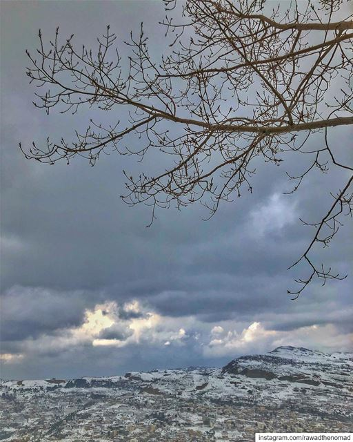 50 shades of Grey ☁️ ☁️ ⛈ .... lebanon kfardebian faraya mylebanon ... (Kfardebian, Mont-Liban, Lebanon)