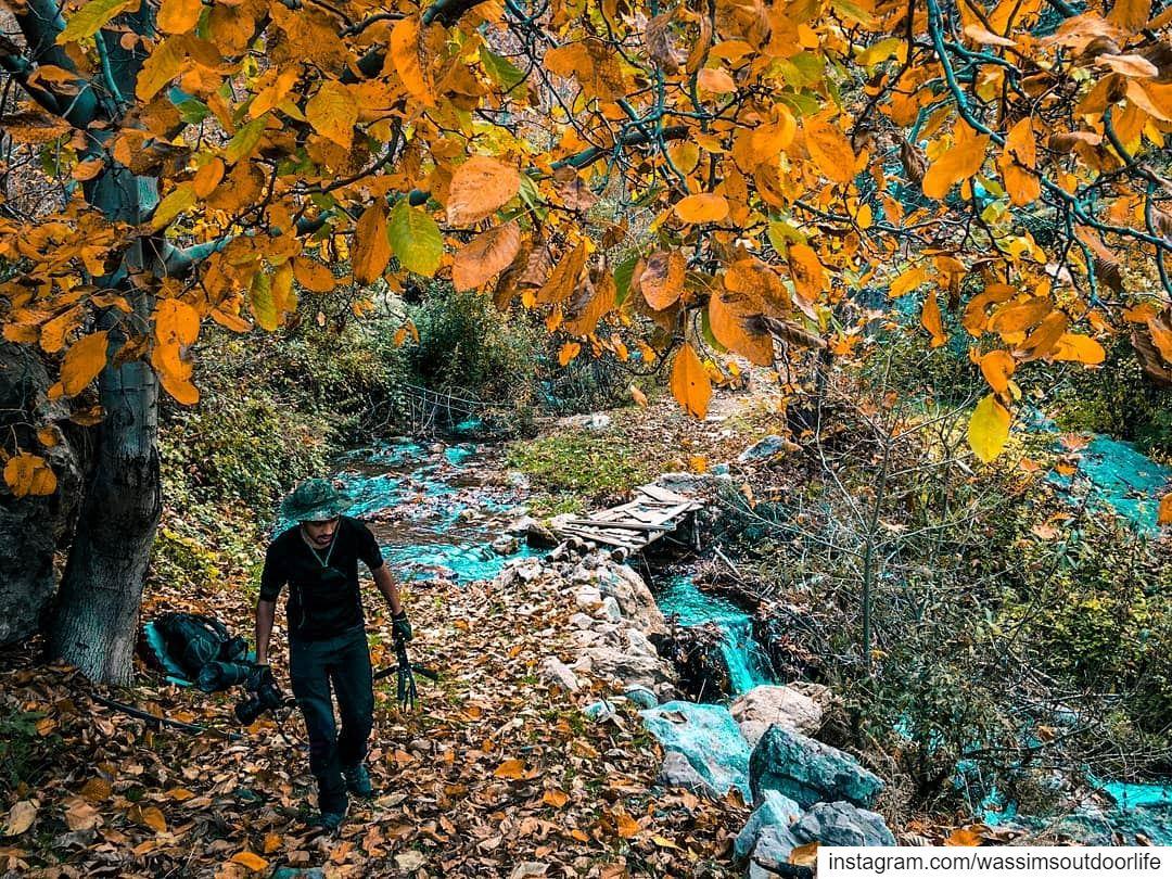 Never stop exploring lebanon annaharnewspaper lebnon_pitures...