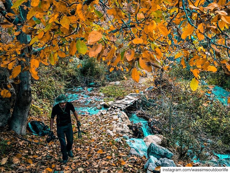 Never stop exploring lebanon annaharnewspaper lebnon_pitures...