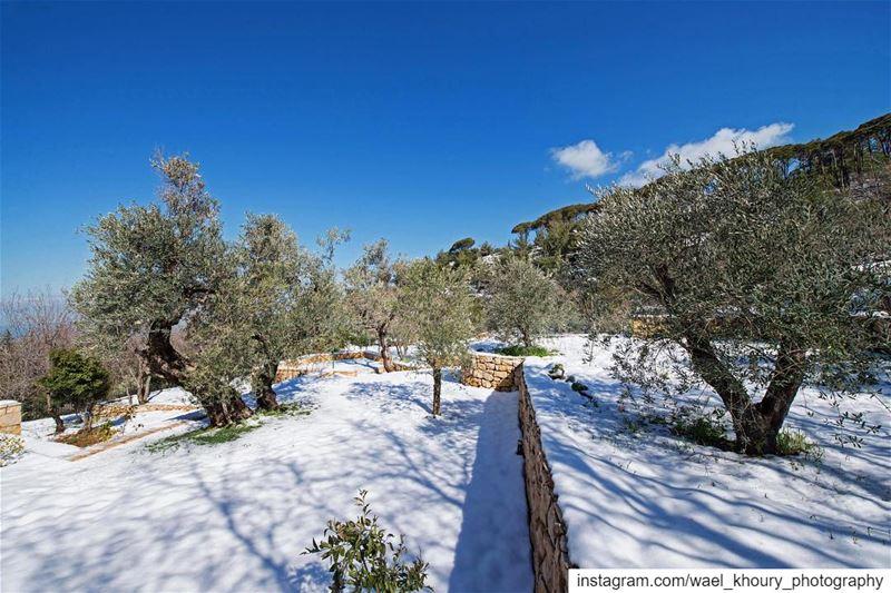 photooftheday landscape view lebanon lebanon_hdr instagood ... (Aïn Ksoûr, Mont-Liban, Lebanon)