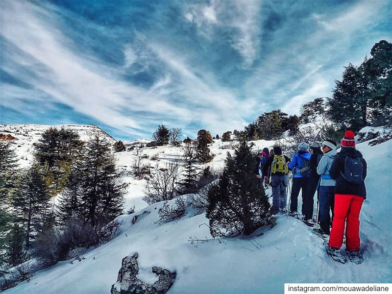 Ready for our next  snowshoeing adventure ⛸ cantwait❄ breaktheroutine ... (Arz Tannoûrîne)