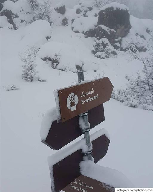 >>>? JabalMoussa unescomab unesco ... (Jabal Moussa Biosphere Reserve)