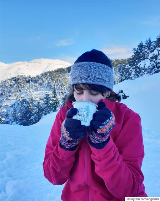 Wild and free 🌲❄ (Ehden, Lebanon)