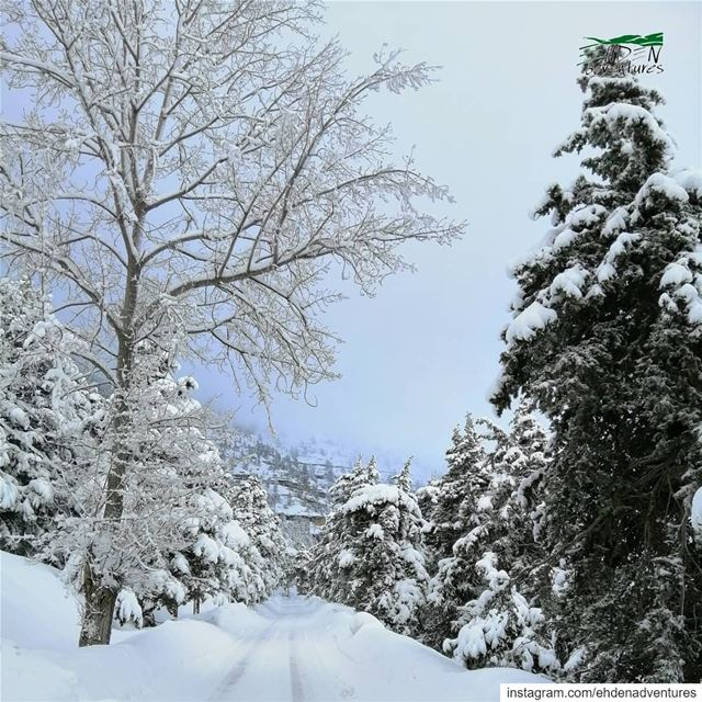 goodmorninglebanon helloworld صباح_الثلج إهدن ehden lebanon لبنان ... (Ehden, Lebanon)