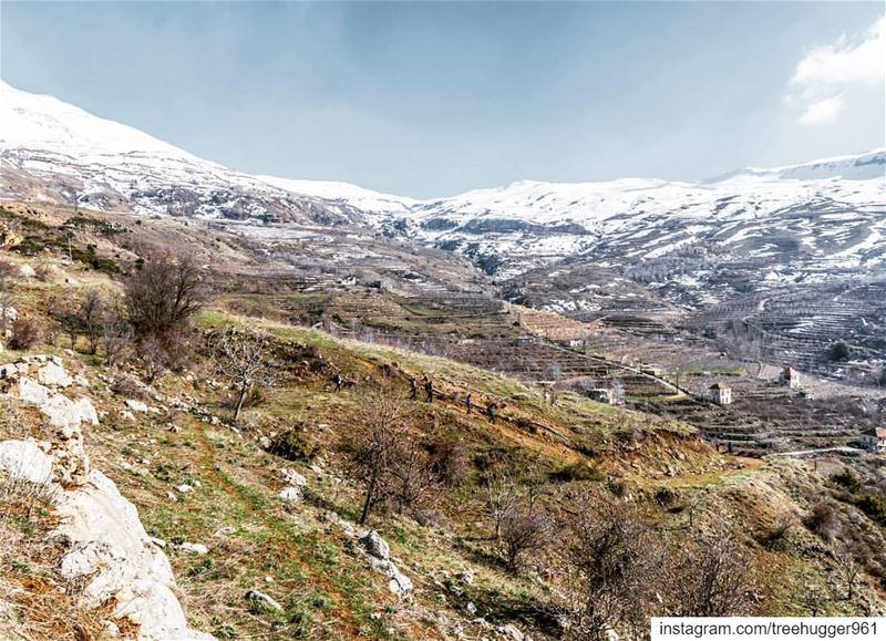 lebanon hiking nature outdoors livelovelebanon livelovebeirut ...